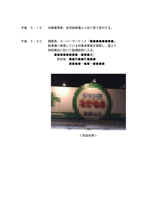 調査報告書(31/37)