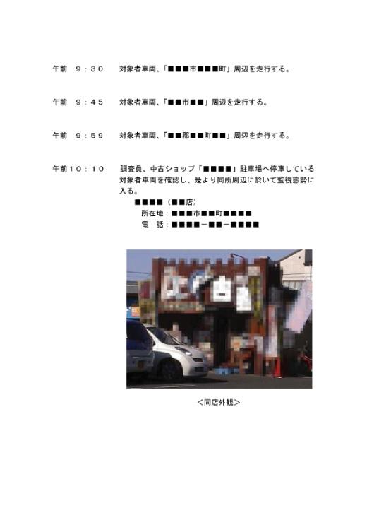 調査報告書(5/37)