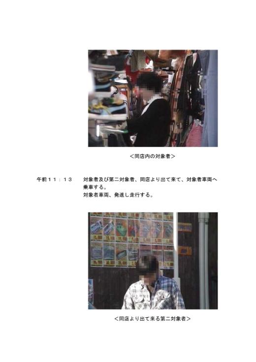調査報告書(7/37)